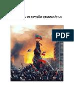 RELATÓRIO DE REVISÃO BIBLIOGRÁFICA.pdf