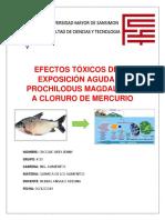 Efectos Tóxicos de La Exposición Aguda de Prochilodus.pptx