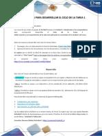 Ruta Detallada de la Guía CicloTarea1-Lo que debes hacer.pdf