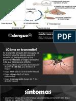 Dengue y Cancer Majo y Memi
