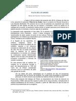 PLATA-DE-LOS-ANDES.pdf