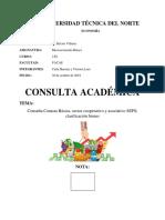 Consulta Canasta Básica, Seps, Bienes
