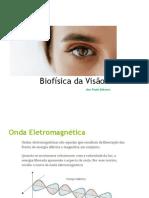 Biofísica Da Visão_ana 2019