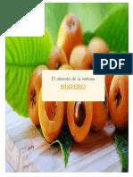 fruto nispero japones