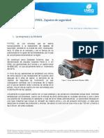 Caso de estudio Calzado Patrol.pdf