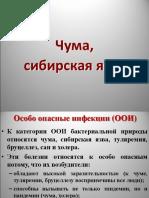 Chuma_Sib_yazva.pptx