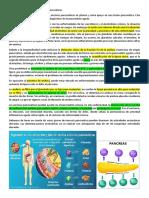 Determinación de Enzimas Séricas Pancreáticas
