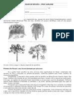Revisão Botanica 1 Ano 4 Bim