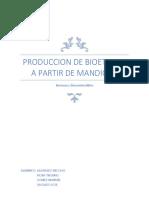 BIOETANOL DE MANDIOCA.docx
