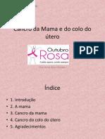 Cancro Da Mama e Do Colo Do Útero