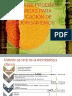 Batería de Pruebas Bioquímicas Para Identificación de Microorganismos
