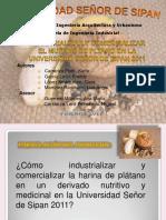 proyectodeinvestigacionexposicion-111122185311-phpapp01