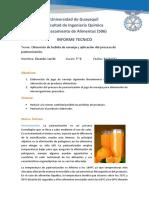 290931452-Informe-Pasteurizacion-Lab.docx