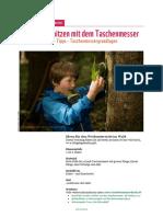 2015 05 Lehrmittel Schnitzen Mit Dem Taschenmesser