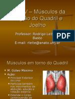 6692746-Aula-IV-Musculos-Da-Regiao-Do-Quadril