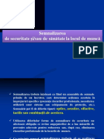 9 -  Semnalizarea SSM.pdf