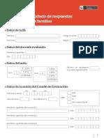 ficha-consolidado.pdf