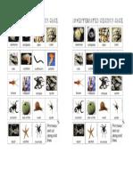 invertebrates primaria
