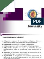 patogenia virica