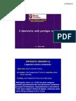 Il Lab Oratorio Nella Patologia Renale