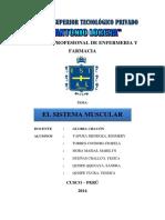 Monografia Sistema Muscular