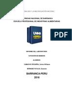 INFORME DE CATACIÓN DE VINOS.docx