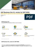 SAP Business One SAP HANA