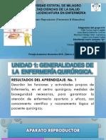 Sistema Reproductor Femenino y Masculinoytyytty