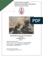 Primer Informe de Estratigrafia