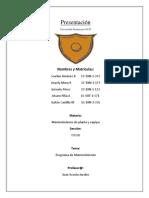 Mantenimiento Programa (1)