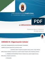 6.Organizacion Celular
