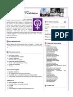 Portal Feminismo