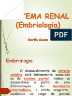EMBRIOLOGIA+SISTEMA+RENAL.ppt