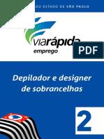 Depilador e Designer de Sobrancelhas 2.pdf