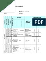 Matriz de Identificacion de Riesgo Maria Fernanda