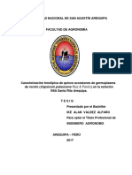 AGvaalia.pdf