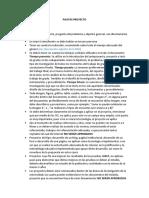 PAUTAS PROYECTO.docx