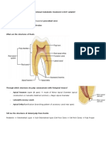 Endodontic Notes