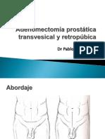 sau2012-instrumentacion-prostata.pptx