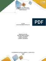 Paso 1- Contextualizar- Cuadro Para Desarrollar La Actividad. (1)