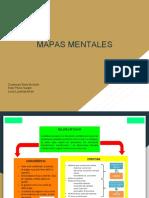 Mapas Mentales t.1