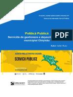 Politică-publică