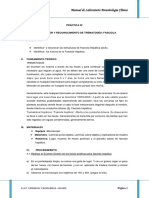 PRACTICA Tenia, Fasciola, Ascaris y Echinococus