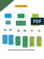 Organizador Grafico Distribuidora Lap