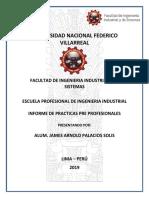 Informe de Practicas Pre Profesionales Arnold Palacios