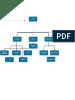 ORGAN CHART.pdf