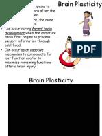 neuro lesson 12