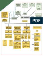 MAPA CONCEITUAL - toxicodinâmica