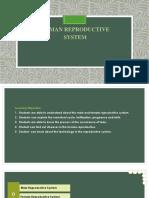 PPT-Human Reproductive System-Anjalia Santika.pptx