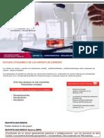 Citoquímica - Unidad i.ii Carbohidratos – Biología Molecular